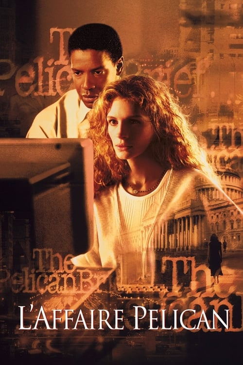 Visualiser L'affaire Pélican (1993) streaming HD