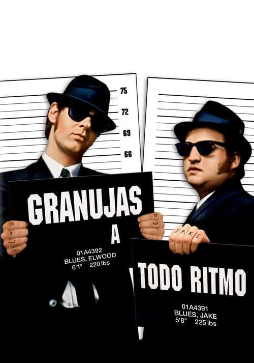 Descargar Granujas a todo ritmo (The Blues Brothers) en torrent