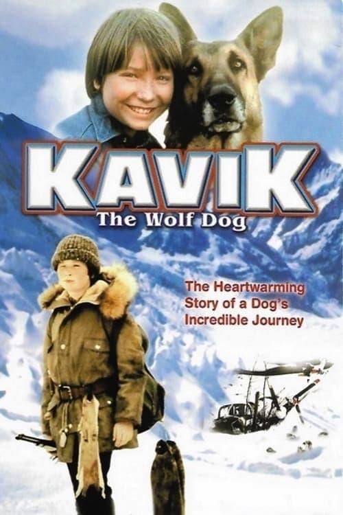 Sledujte Kavik The Wolf Dog S Titulky