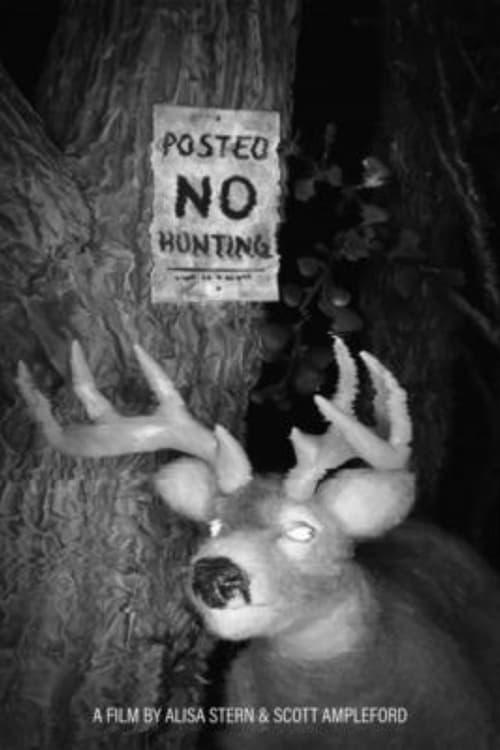 Posted No Hunting