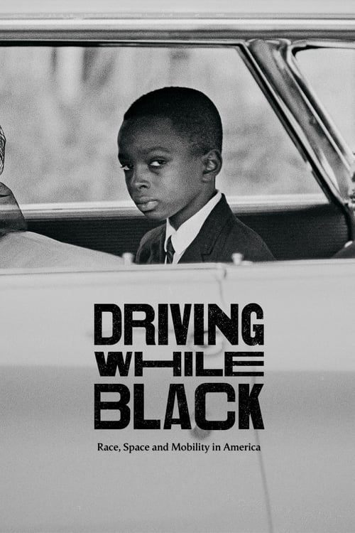 Driving While Black: Race, Space and Mobility in America What I was looking for
