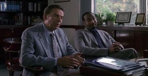 Law & Order: Season 12 – Épisode Armed Forces