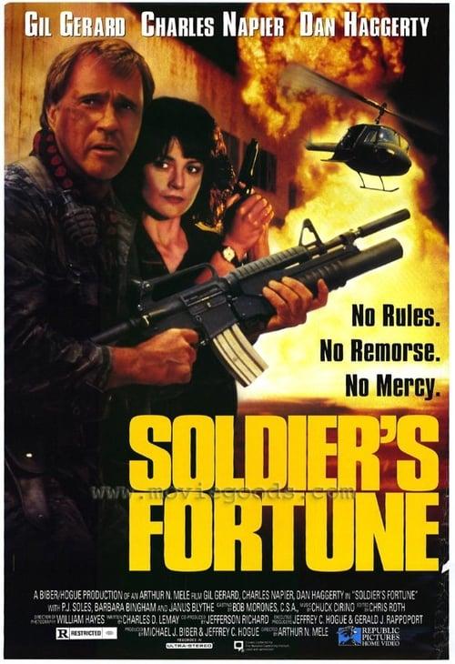 Regarde Soldier's Fortune En Français