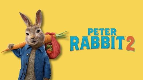 Peter Rabbit 2: The Runaway - The garden was just the beginning. - Azwaad Movie Database