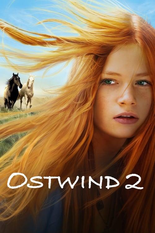 Windstorm 2 (2015) Poster