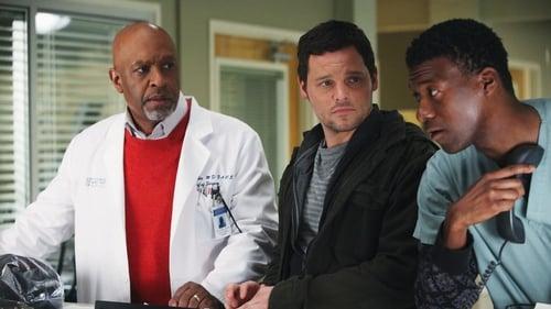 Grey's Anatomy - Season 7 - Episode 15: Golden Hour