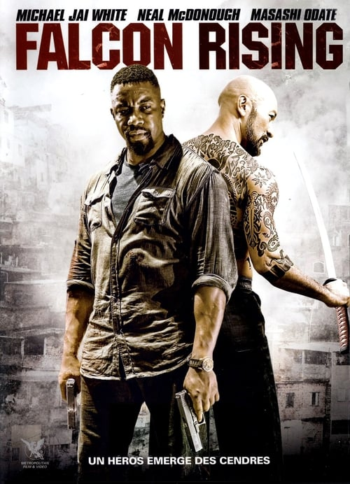 Voir Falcon Rising (2014) streaming