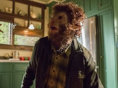 Grimm - Season 3 - Episode 10: Eyes of the Beholder