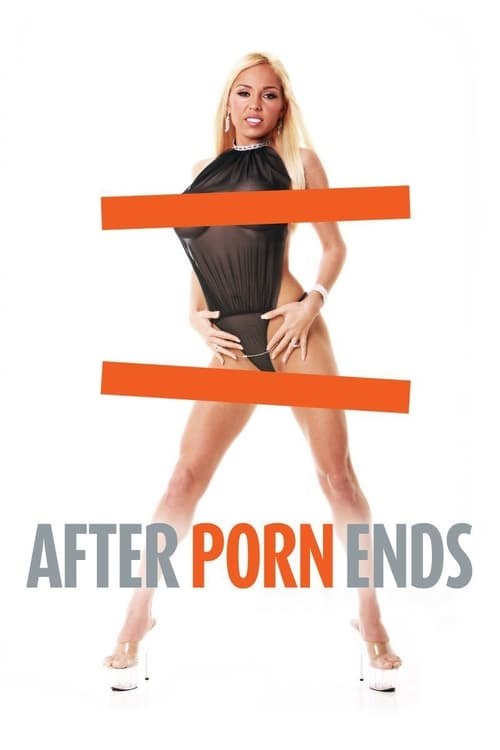 After Porn Ends