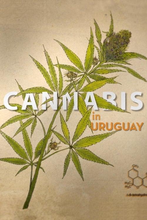 Ver pelicula Cannabis in Uruguay Online