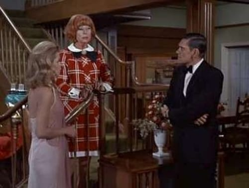 Bewitched: Season 4 – Episode Man of the Year