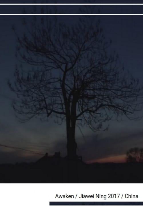 Awaken (2017)
