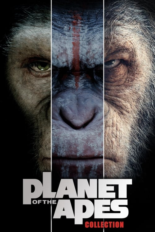 dawn of the planet full movie download in hindi hd 2014