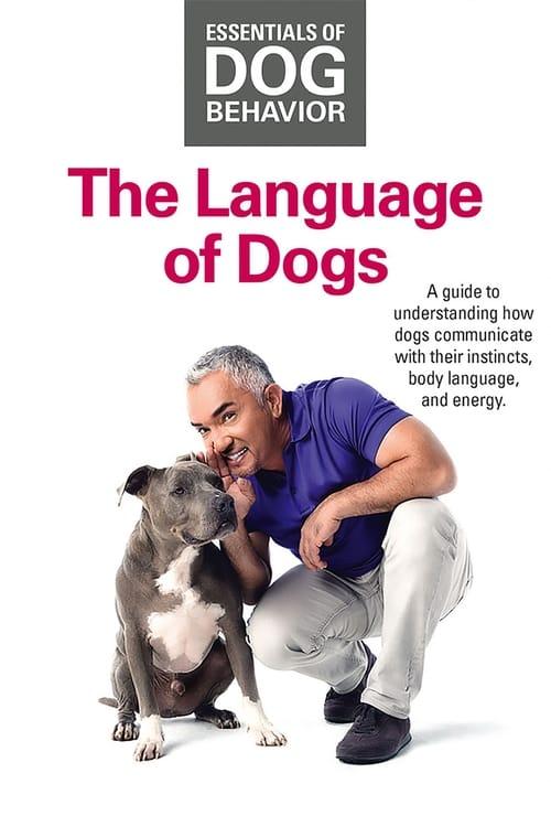 شاهد Essentials of Dog Behavior: The Language of Dogs باللغة العربية على الإنترنت