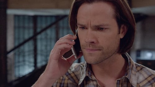 supernatural - Season 10 - Episode 19: The Werther Project