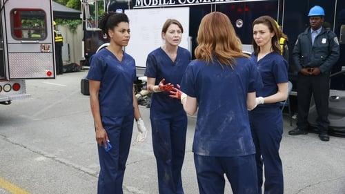 Grey's Anatomy - Season 11 - Episode 23: Time Stops