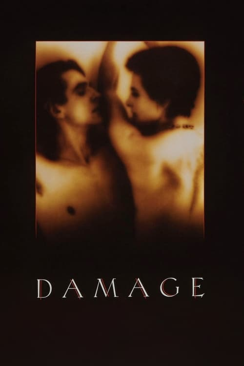 Download Damage (1992) Best Quality Movie