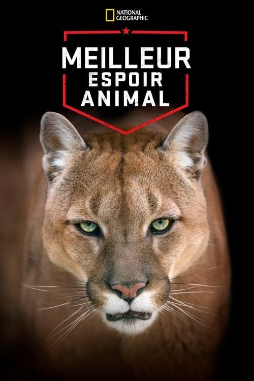 Meilleur espoir animal