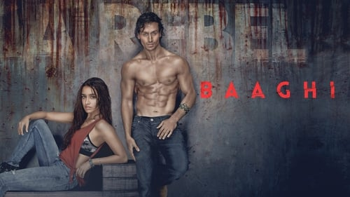 Baaghi (2016) – || 480p || 720p || 1080p || 4K || – SonyKMovies