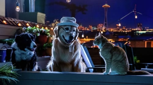 Cats & Dogs 3: Paws Unite watch online