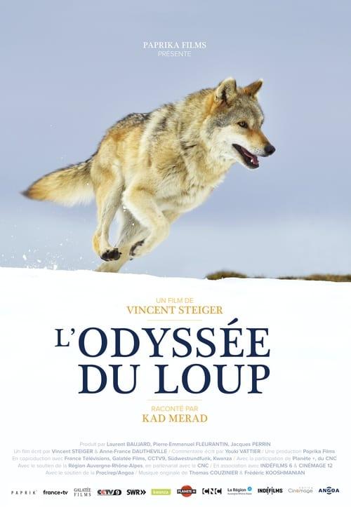 Mira L'odyssée du loup Con Subtítulos En Línea