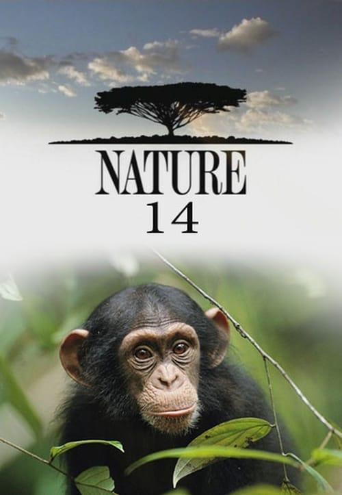 Nature: Season 14