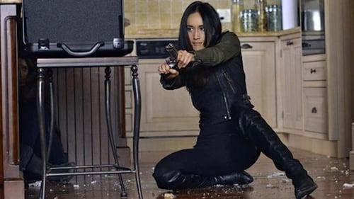 Assistir Nikita S04E06 – 4×06 – Dublado