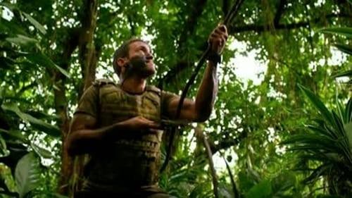 Assistir Hawaii Five-0 S01E16 – 1×16 – Dublado