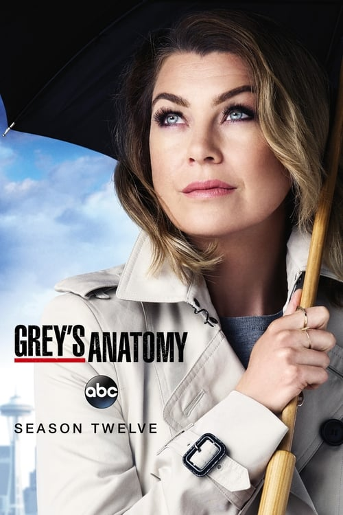 Grey X27 S Anatomy: Season 12