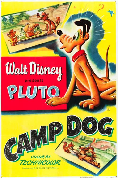 Pluto al campeggio
