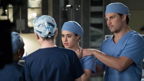 Grey's Anatomy - Season 14 - Episode 19: Beautiful Dreamer