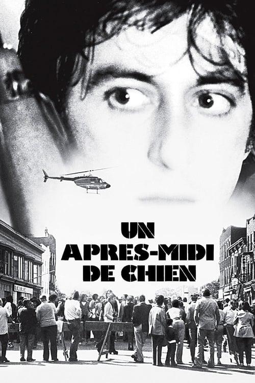 Un après-midi de chien (1975)