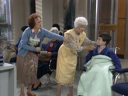 The Golden Girls 1988 Hd Tv: Season 4 – Episode The Days and Nights of Sophia Petrillo