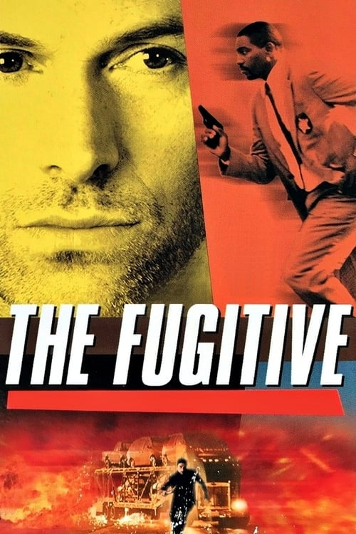The Fugitive-Azwaad Movie Database