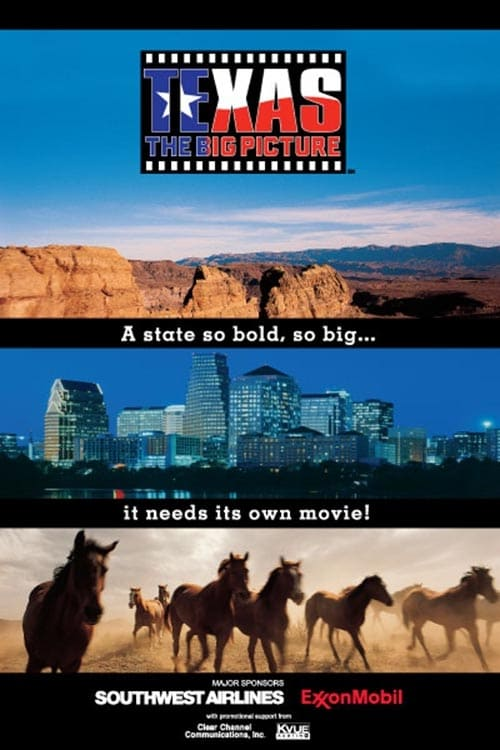 Texas: The Big Picture (2003)