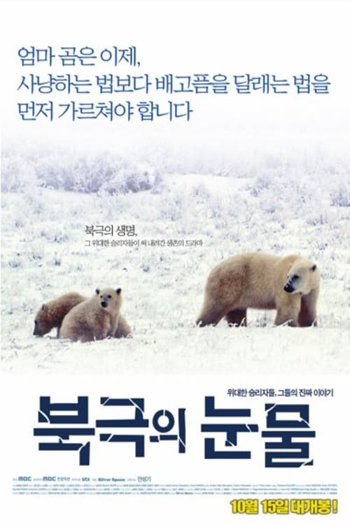 Tears in the Arctic (2009)