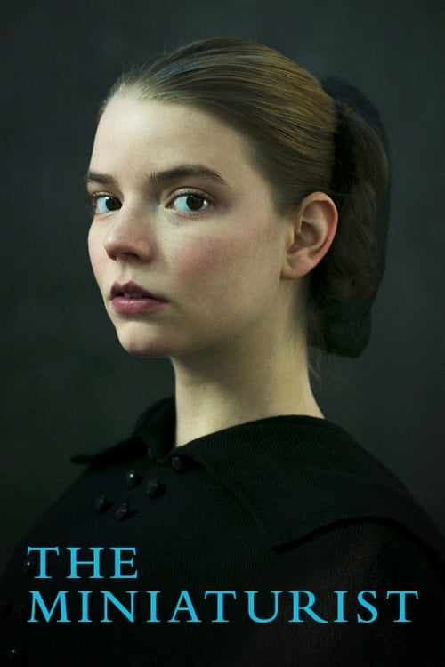 The poster of The Miniaturist
