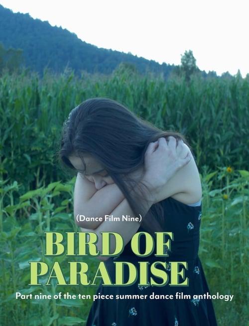 Watch Bird of Paradise - Dance Film Nine Online Flashx