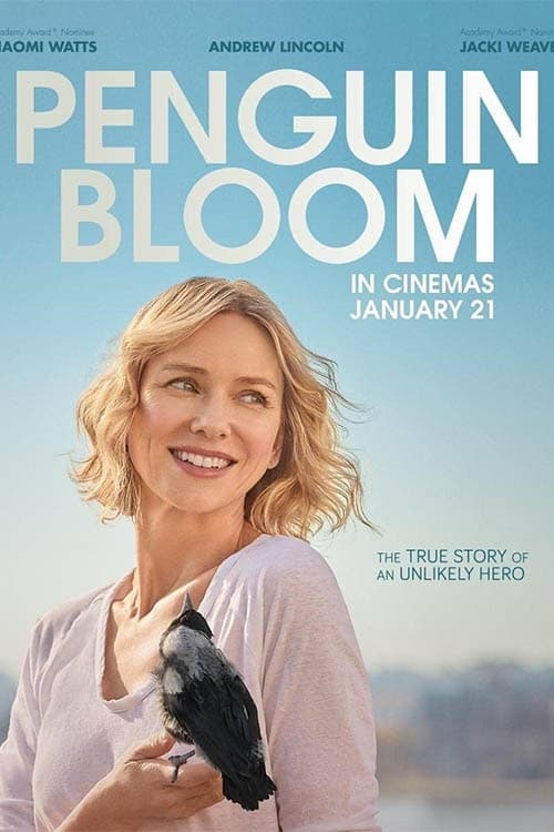 Penguin Bloom Episodes Online