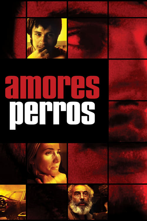 Streaming Amores Perros (2000) Best Quality Movie