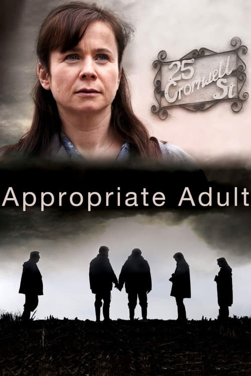 Appropriate Adult poster