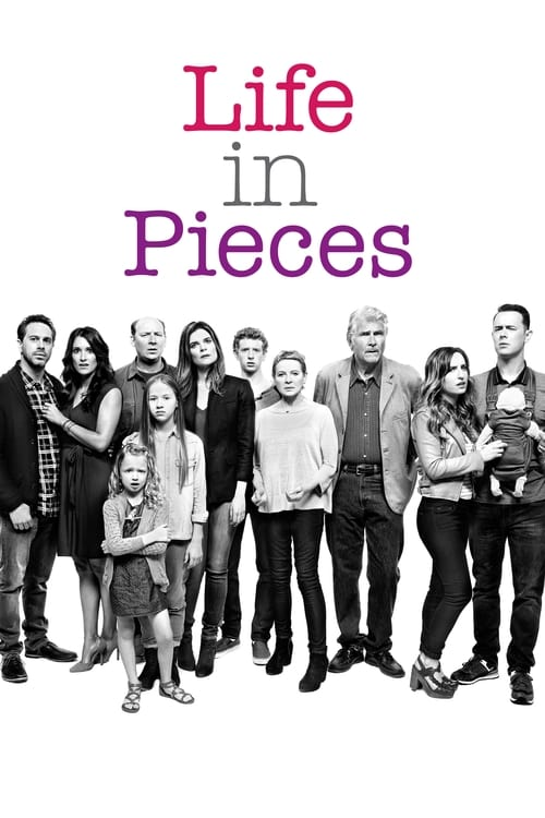 Poster von Life in Pieces