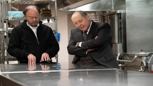 Assistir The Blacklist S07E18 – 7×18 – Dublado