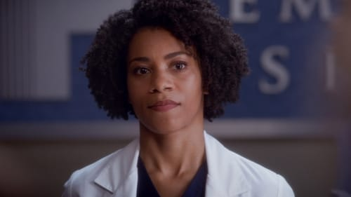 Grey's Anatomy - Season 11 - Episode 2: Puzzle With a Piece Missing