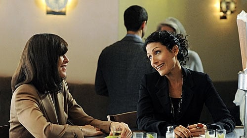 The Good Wife - Season 3 - Episode 5: Marthas and Caitlins