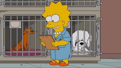 Lisa, a Veterinária