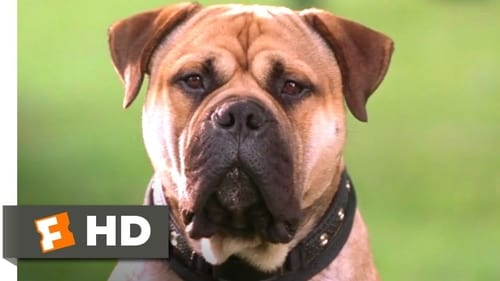 Spot – Um Cão da Pesada