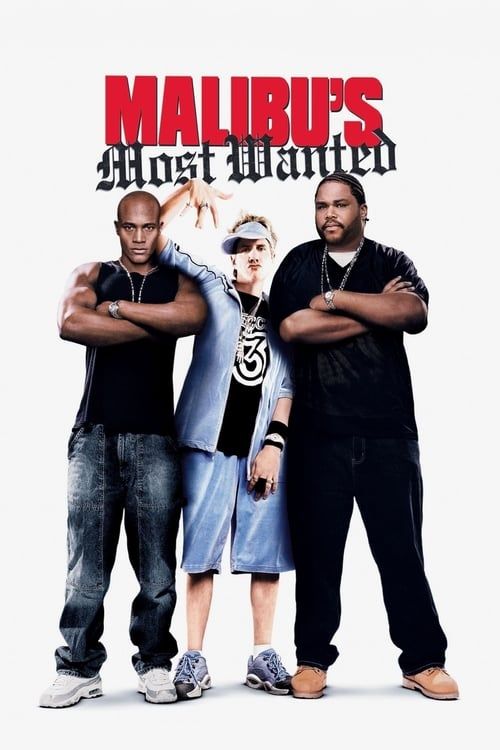 Malibu's Most Wanted Affiche de film