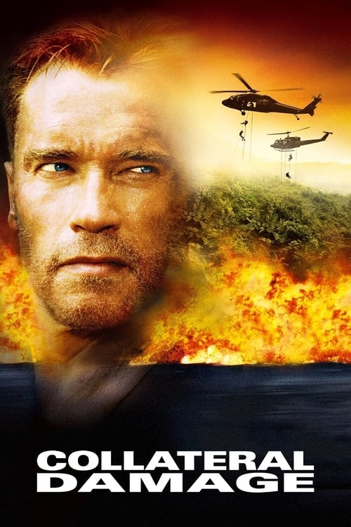 Download Collateral Damage (2002) Best Quality Movie