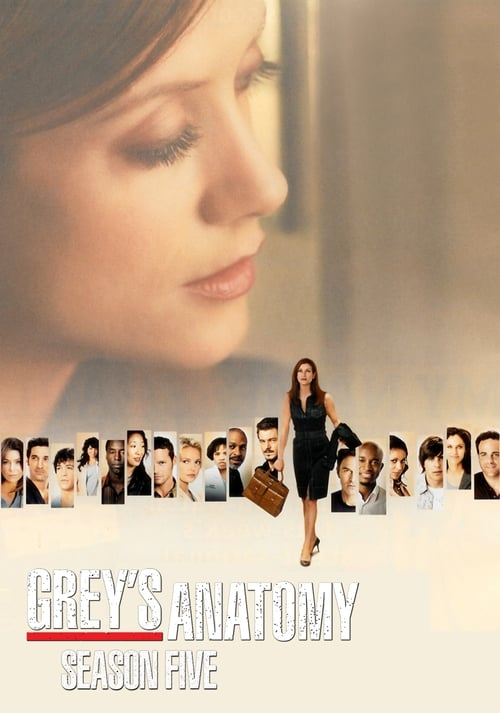 Grey X27 S Anatomy: Season 5